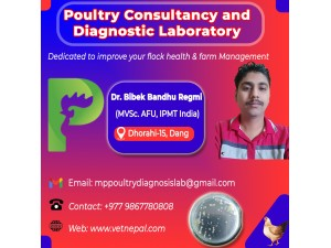 Poultry Consultancy and Diagnostic Lab