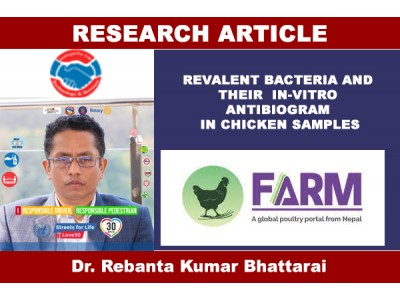 REVALENT BACTERIA AND THEIR IN-VITRO ANTIBIOGRAM IN CHICKEN SAMPLES
