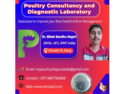 पोल्ट्री कन्सल्टेन्सी एण्ड डायग्नोष्टिक ल्याब (Poultry Consultancy & Diagnostic Lab)