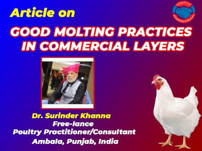 GOOD MOLTING PRACTICES IN COMMERCIAL LAYERS