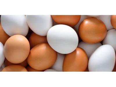 Brown Eggs vs White Eggs: What's the Difference