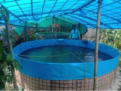 Practices of Fish farming in Biofloc culture